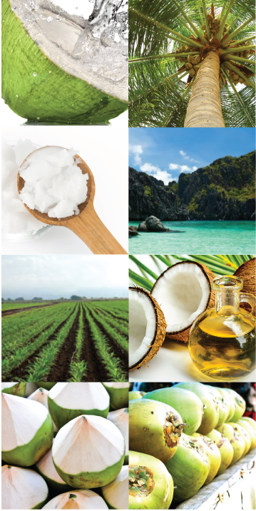 Pure Sales organic coconut oils and coconut water